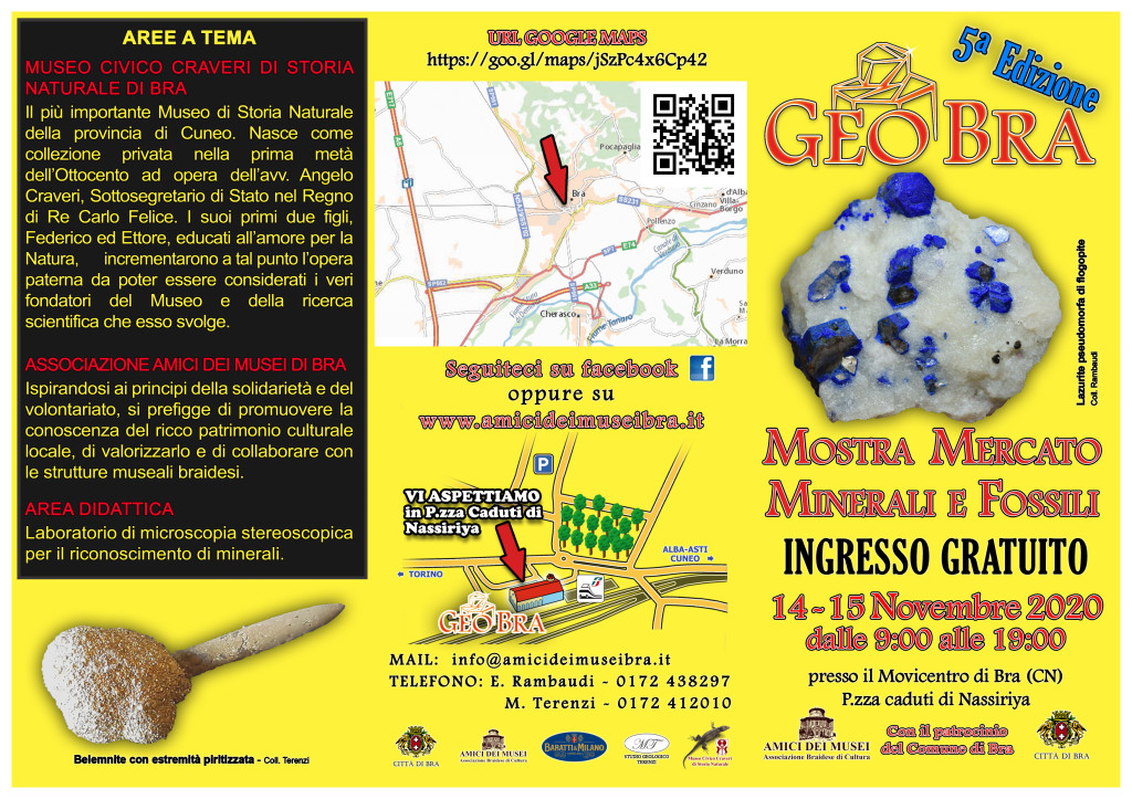 GeoBra2020est
